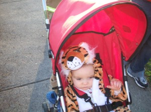 Logan the Tiger