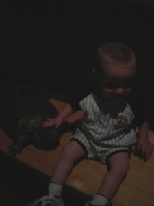 My Kind Of Turtle